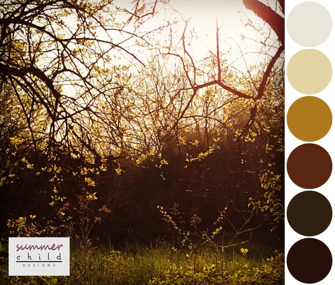 forest-light-palette